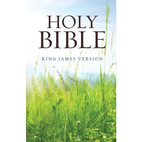 KJV Standard Edition Green Grass (Softcover) - New Chapter Bookstore