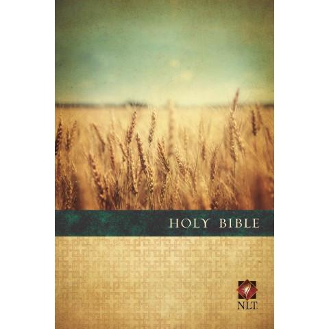 Premium Value Slimline Bible Large Print NLT (Paperback ) - New Chapter Bookstore