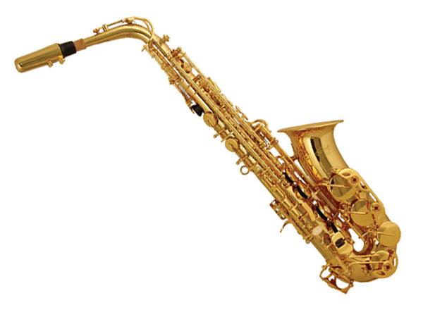 Elkhart 100AS Alto Saxophone Outfit In Gold Lacquer