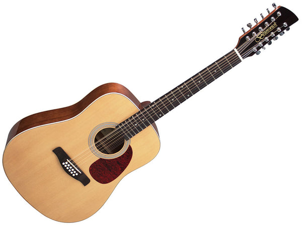 Brunswick Dreadnought 12 String