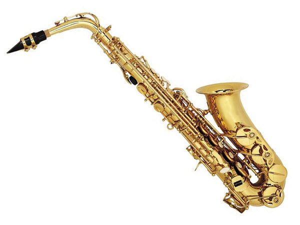 Nuova AS3GL Alto Saxophone Outfit