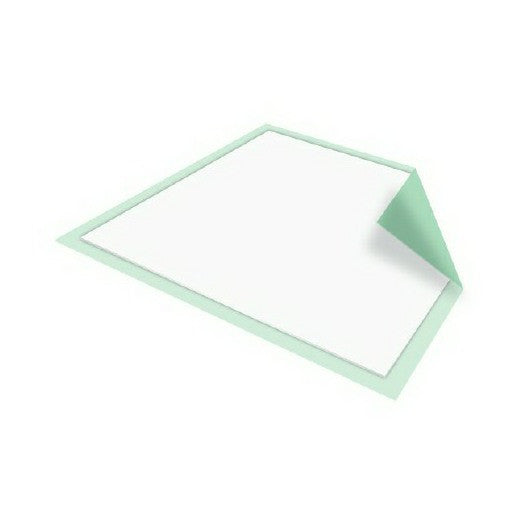 Disposable Absorbent Underpad, Moderate Absorbency | McKesson - PRO2 Medical Equipment Lubbock
