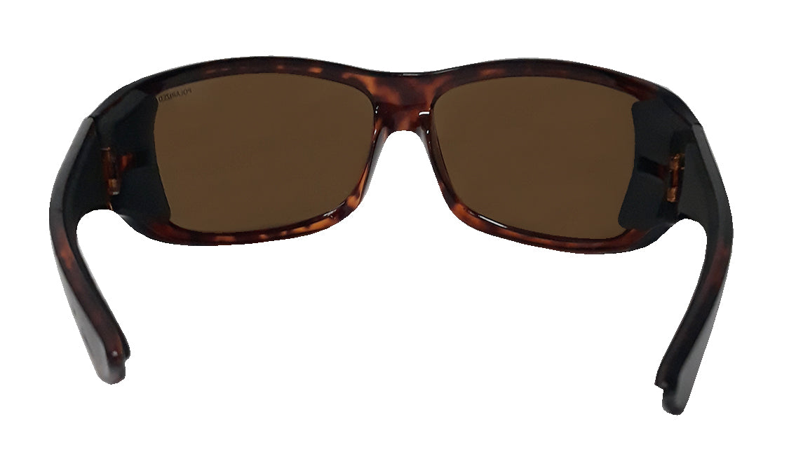 BUTTER - Polarized Tortoise