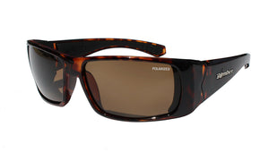 PIPE - Polarized Brown Tortoise