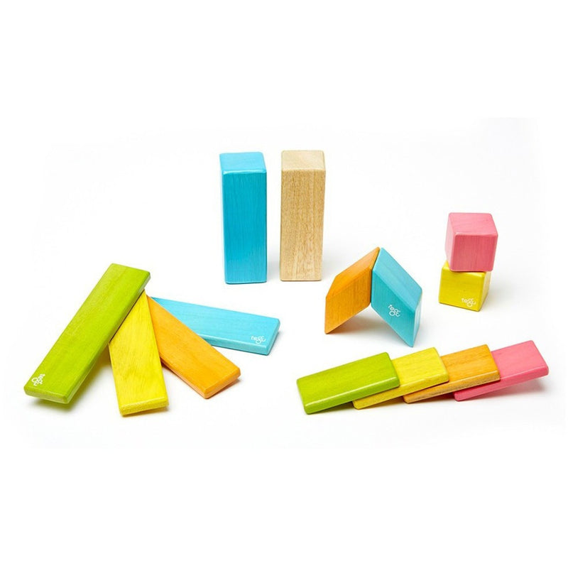 Tegu 14 Piece Magnetic Wooden Block Set- Tints - Magnetic Building Sets - Anglo Dutch Pools and Toys