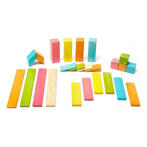 Tegu 24 Piece Magnetic Wooden Block Set- Tints - Magnetic Building Sets - Anglo Dutch Pools and Toys