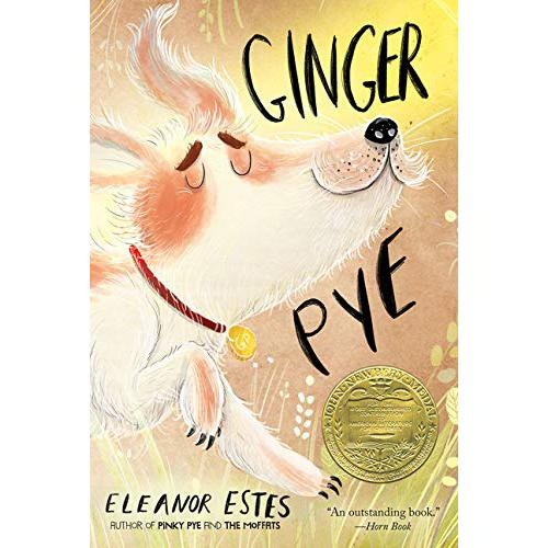 Chapter Books - Ginger Pye