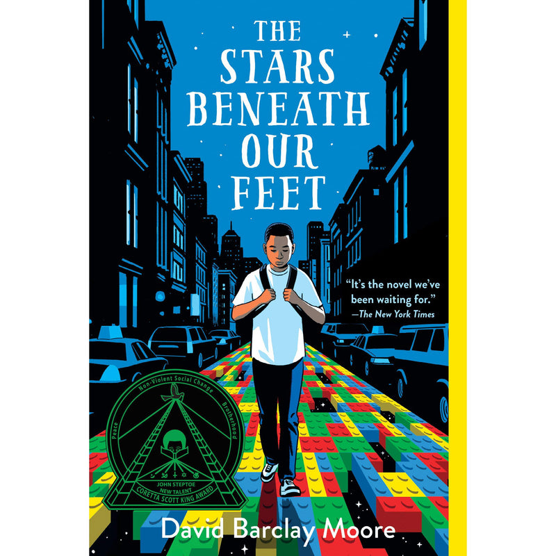 Chapter Books - The Stars Beneath Our Feet
