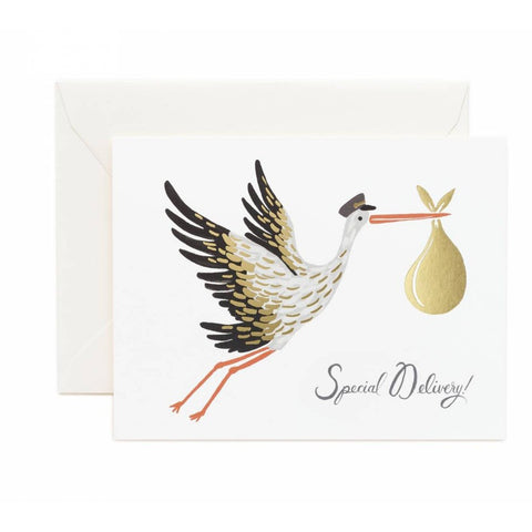 Baby Stork Greeting Card- - Anglo Dutch Pools & Toys  - 1