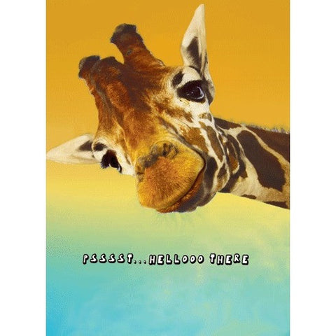 Giraffe Birthday Card- - Anglo Dutch Pools & Toys