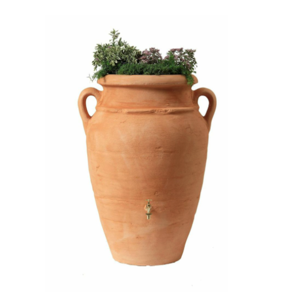 Graf Antique Amphora Terracotta