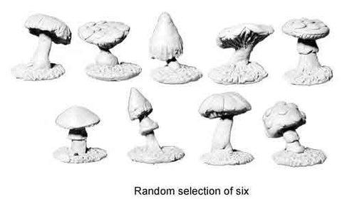 Killer Fungi (mix of 6)
