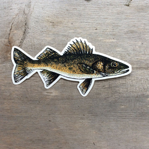 Walleye Decal by Nature Walk