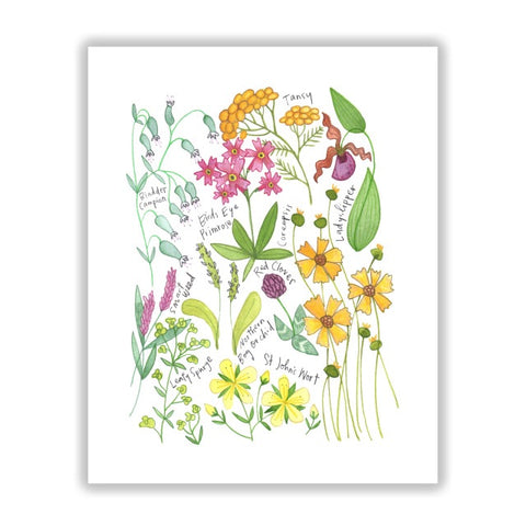 Northern Wildflowers 8 x 10 by Katie Eberts