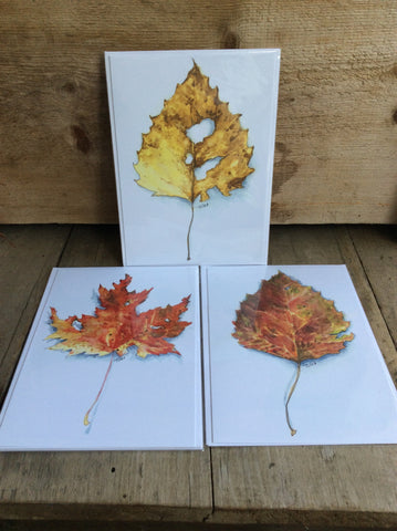Leaf Greeting Card by Sarah Tule