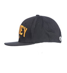 TEAM 8 LOGO HAT