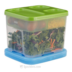 On the Go Bento Salad Container