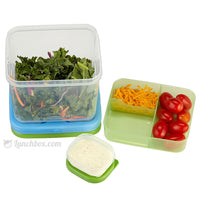 Salad Lunch Box for Work