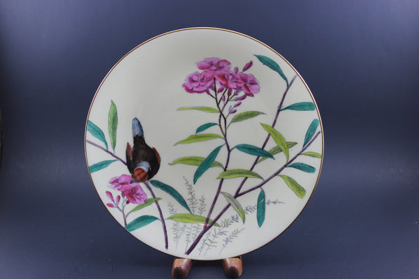 Mintons Essex Birds - Antique Plate, Circa 1880-1890