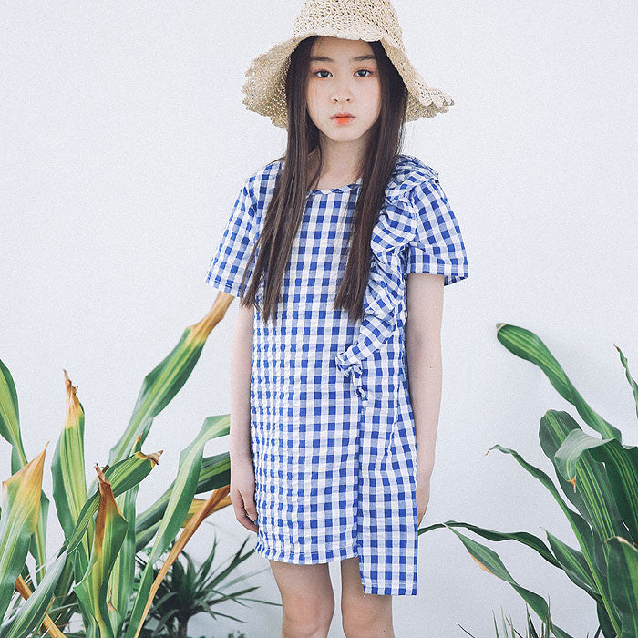[BERRY BERRY] Lou Check Dress - BLUE