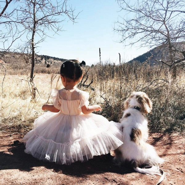 Charlotte Royal Dress, little girls tulle dress in Peach Beige by aenny04