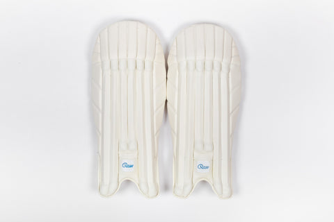 2019 WICKET KEEPING PADS