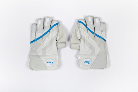 2019 WICKET KEEPING GLOVES