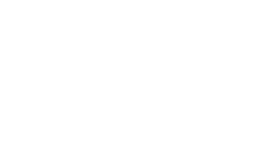 RAW CRICKET COMPANY