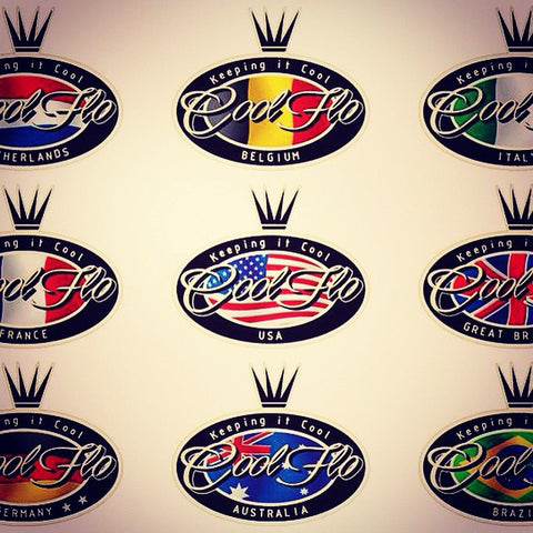 "Ltd edition GB 8"" Script Decal"