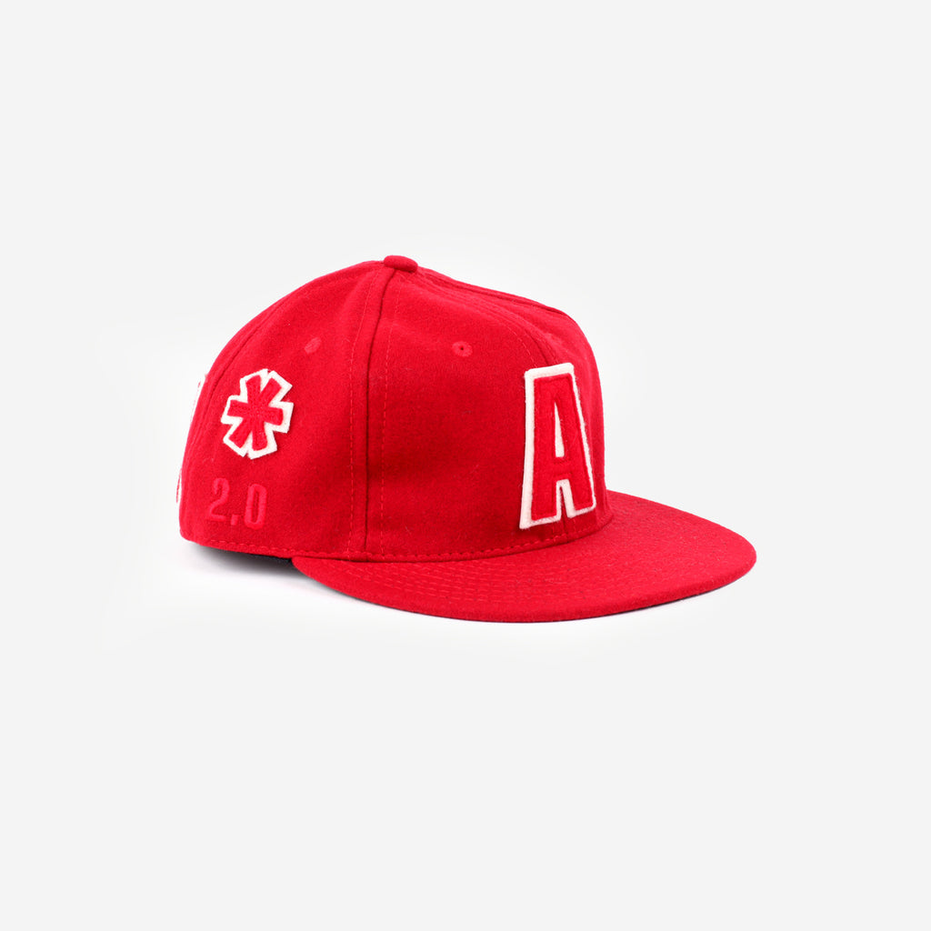 a number of names* Anon X Ebbets 2.0 Fitted Cap