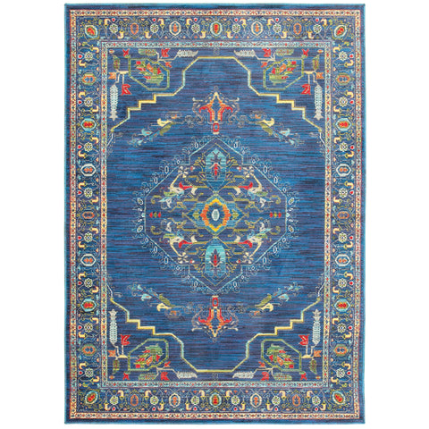 Courtney Collection Pattern 564B4 6x9 Rug