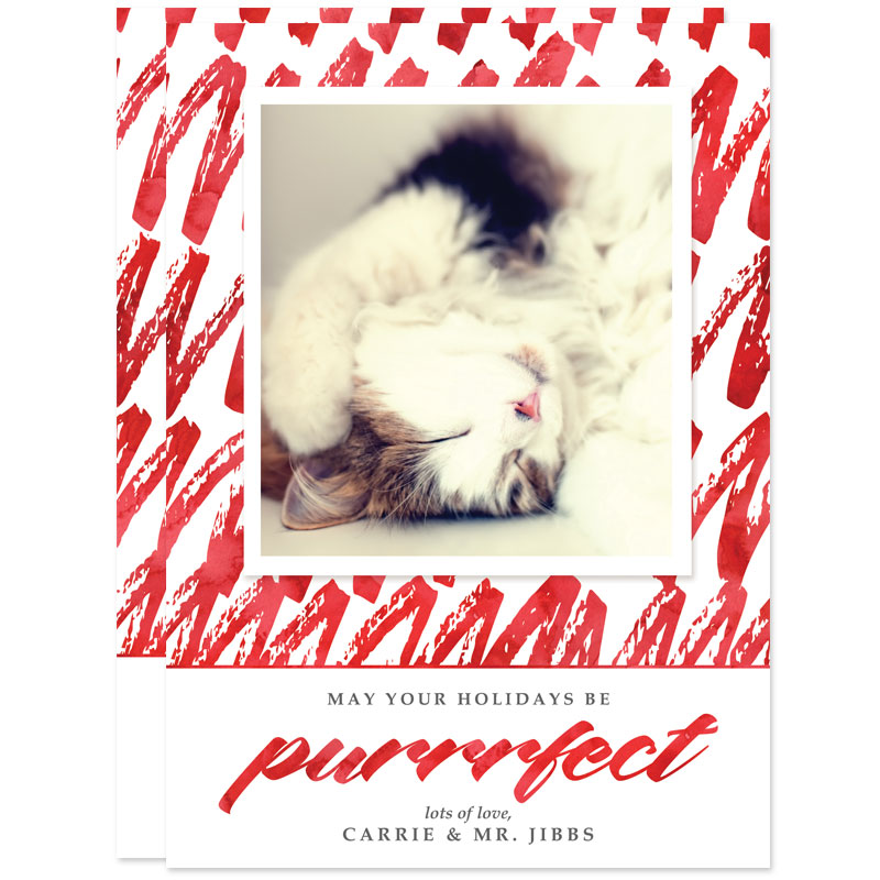 Purrrfect Cat Holiday Photo Cards by The Spotted Olive