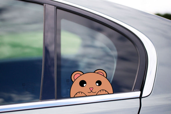 Cute Hamster Peeking