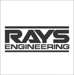 Rays Enginerring