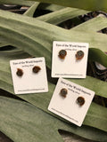 Ammonite sterling silver stud earrings