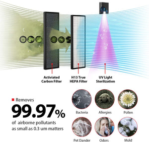 Smart WiFi Air Purifier.