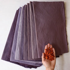 Logwood violet natural dyes