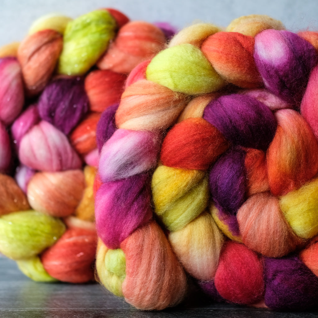 MCN and merino/cashmere/sparkle combed top: Rainbow Carrots, 4 oz