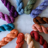 Perfect Blend Mini Skein Set: Escalante