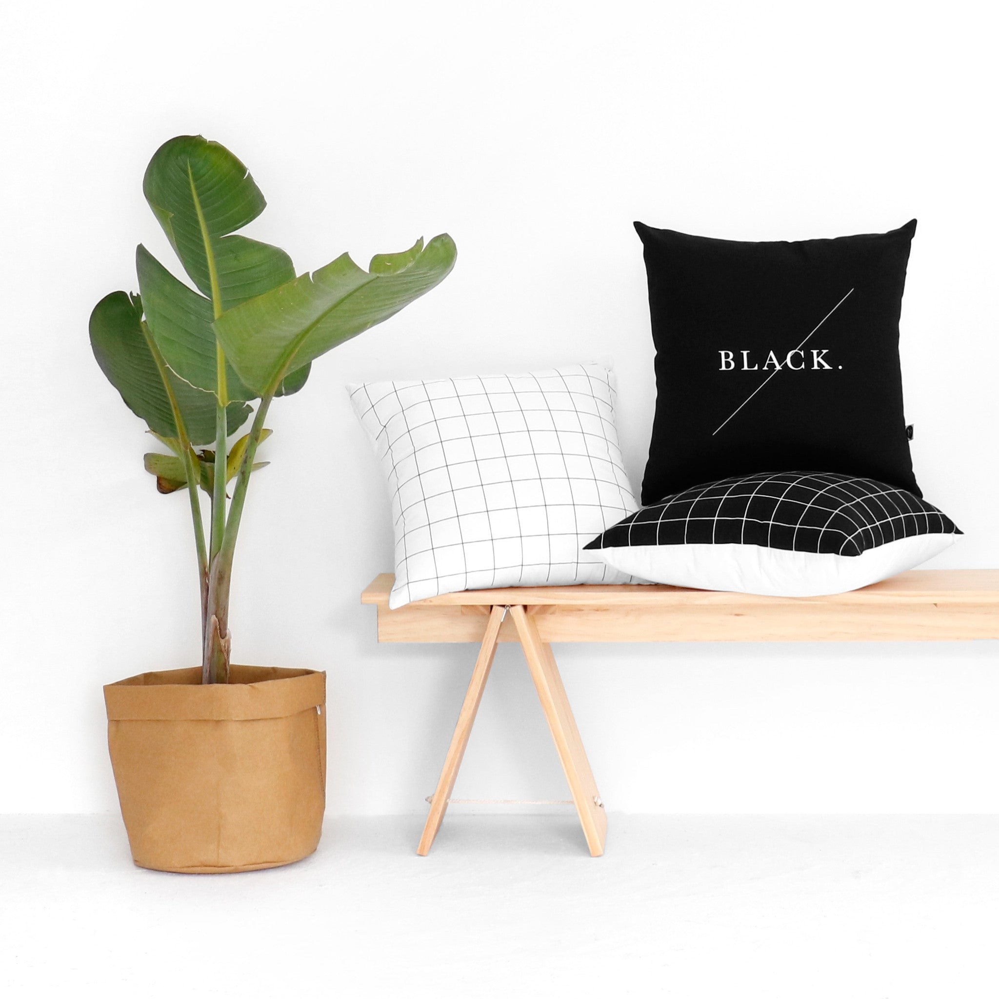 Black Text Cushion