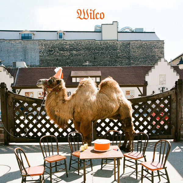 WILCO - WILCO (THE ALBUM) LP PICTURE DISC