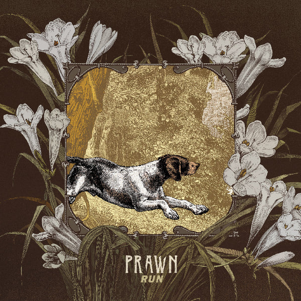 PRAWN - RUN LP