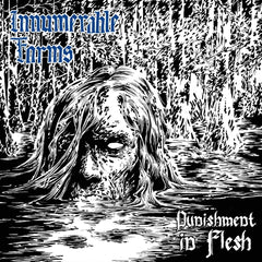INNUMERABLE FORMS - PUNISHMENT IN FLESH CS