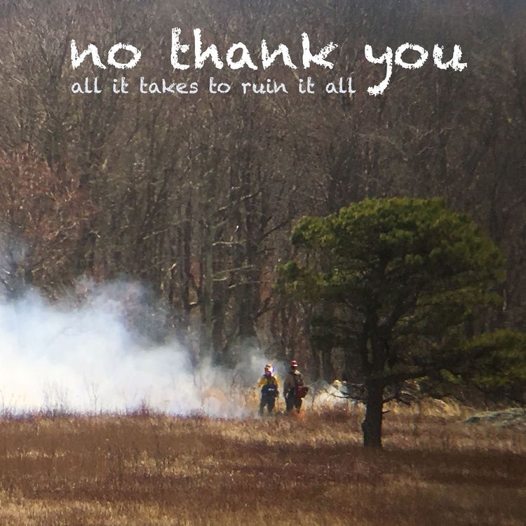 NO THANK YOU - ALL IT TAKES TO RUIN IT ALL LP