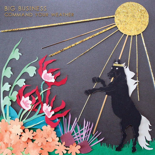 BIG BUSINESS - COMMAND YOUR WEATHER LP