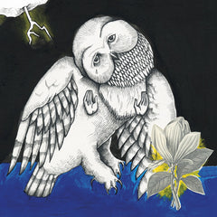 SONGS: OHIA - THE MAGNOLIA ELECTRIC CO. 2XLP
