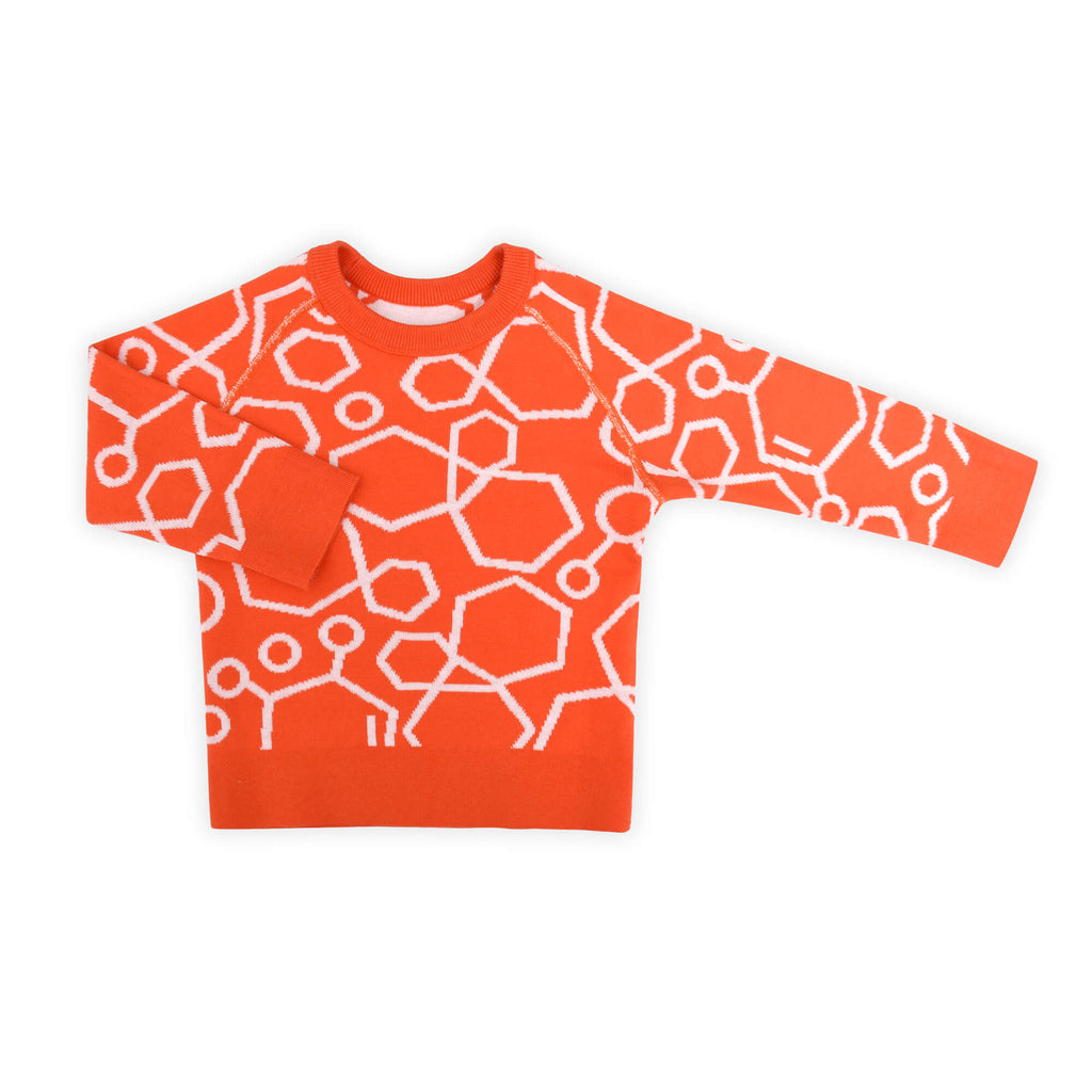 Molecule Reversible Sweater
