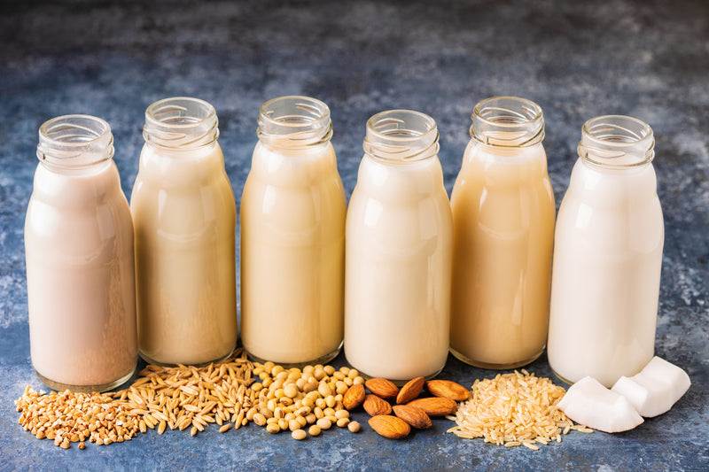 Everything you need to know about milk