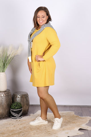 Olivia Shift Dress in Mustard