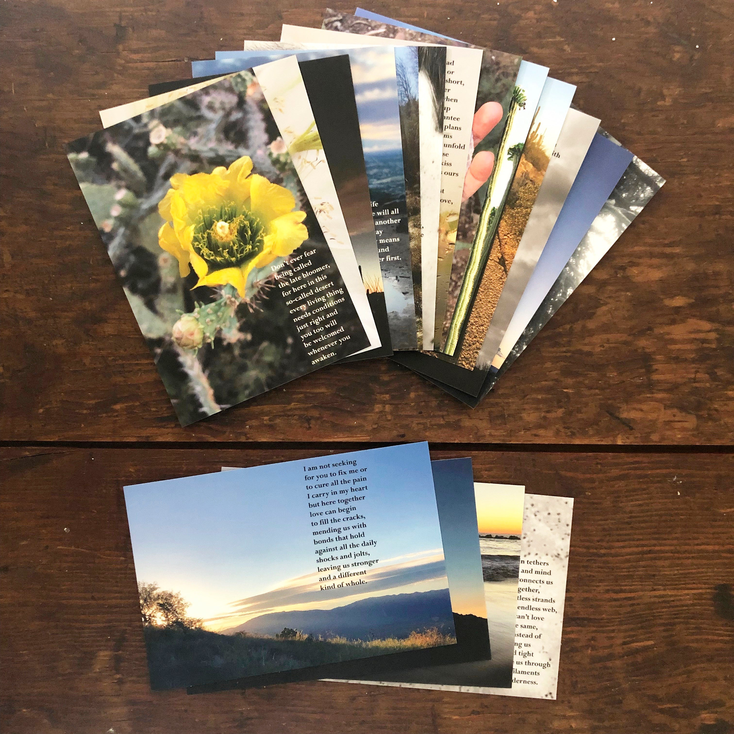 Poetry Postcards: SET OF 21